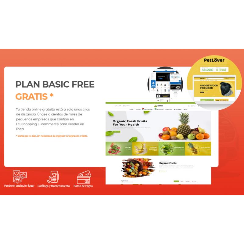 PLAN BASIC FREE