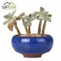 Mini maceta de cerámica - Wituse kawaii